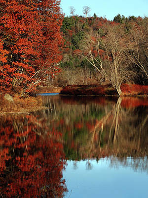 Photograph - The Ammonoosuc In Autumn by Nancy Griswold