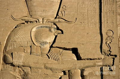 Horus Photograph - The Ancient Egyptian God Horus Sculpted On The Wall Of The First Pylon At The Temple Of Edfu by Sami Sarkis