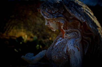 Photograph - The Angel Of The Grove by Nature Macabre Photography
