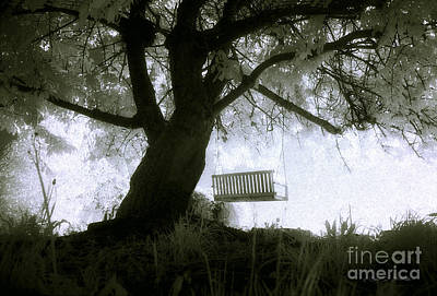 Photograph - The Angel Swing by Craig J Satterlee