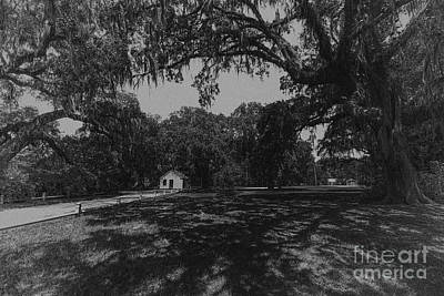 Photograph - The Antebellum South by Dale Powell
