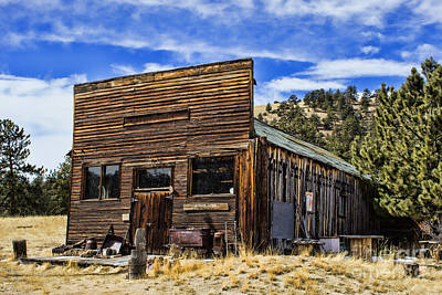 Photograph - The Antique Antique Store by Steven Parker