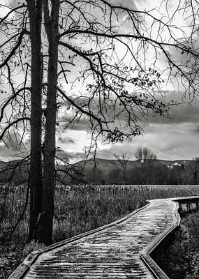 Photograph - The Appalachian Trail by Eduard Moldoveanu