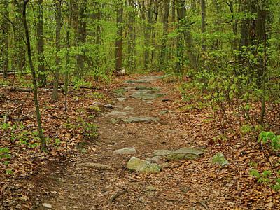 Photograph - The Appalachian Trail In Maryland With Rocks by Raymond Salani III