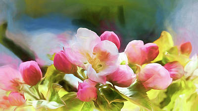 Photograph - The Apple Blossoms Of Spring by Susan Rissi Tregoning