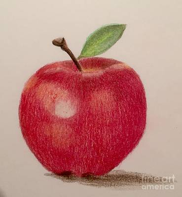 Drawing - The Apple by Eva Ason