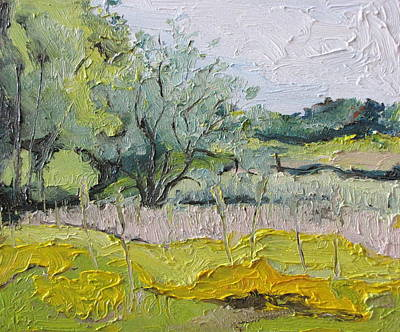 Eastern Townships Painting - The Apple Tree On The Yellow Field Burchton Quebec Canada by Francois Fournier