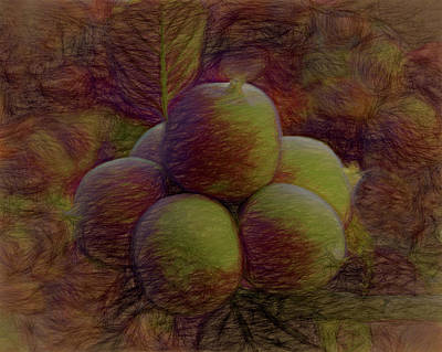 Digital Art - The Apples 2 by Ernie Echols