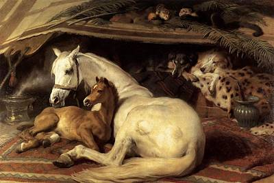 Painting - The Arab Tent by Edwin Henry Landseer