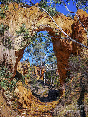 Photograph - Golden Gully Gold Mine by Lexa Harpell