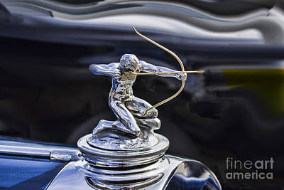 Photograph - The Archer by Steven Parker