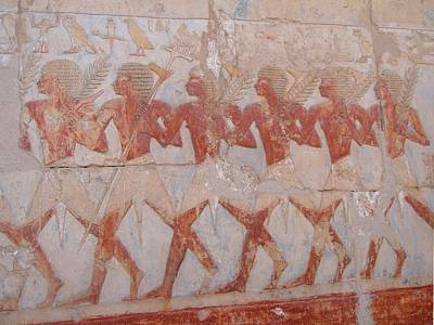 Photograph - The Army Of Hatshepsut by Richard Deurer