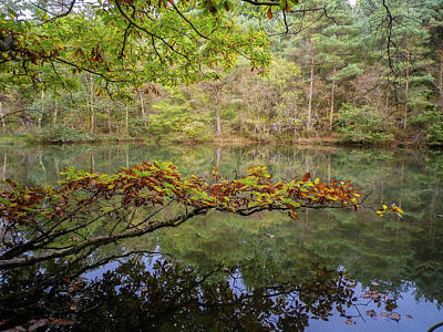 Photograph - The Arsenic Lake Devon Great Consols by Richard Brookes