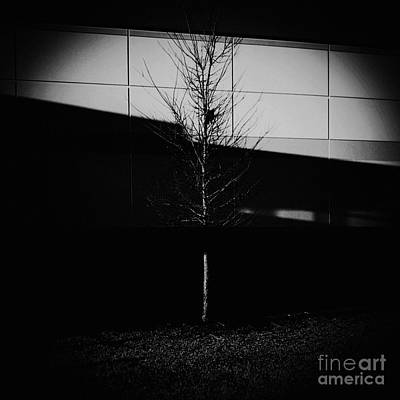 Photograph - The Art Of Light - Monochrome  by Frank J Casella