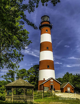 Photograph - The Assateague Lighthouse -virginia by Nick Zelinsky