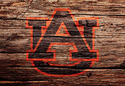 Newton Mixed Media - The Auburn Tigers by Brian Reaves