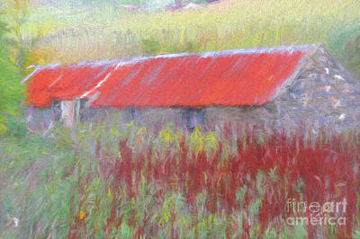 Photograph - The Auld Byre by Diane Macdonald