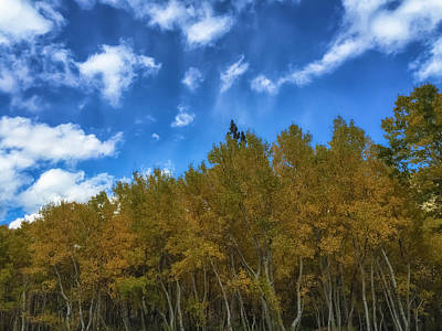 Photograph - The Autumn Sky 1 by Jonathan Nguyen