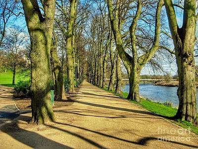 Photograph - The Avenue Of Limes Full Colour by Joan-Violet Stretch