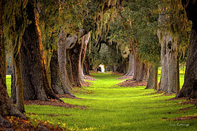 Sports Royalty-Free and Rights-Managed Images - The Avenue Of Oaks Tree Tunnel Sea Island Golf Club St Simons Island Georgia Art by Reid Callaway