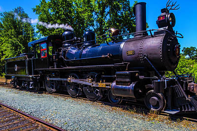 The Awesome Steam Train No 3 Art Print by Garry Gay