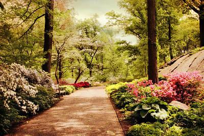 Azalea Photograph - The Azalea Forest by Jessica Jenney