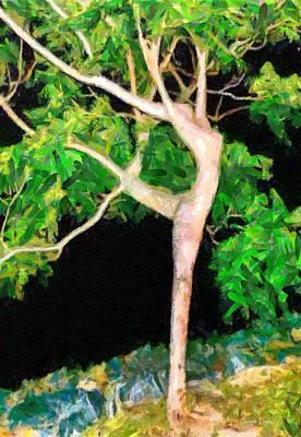 Bush Digital Art - The Ballerina Tree - Da by Leonardo Digenio