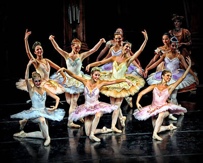 Photograph - The Ballet by Bill Howard