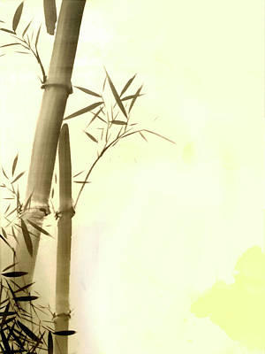 Bamboo Photograph - The Bamboo Branch by Mark Rogan