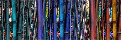 Bamboo Photograph - The Bamboo Forest  by Daniel Arrhakis