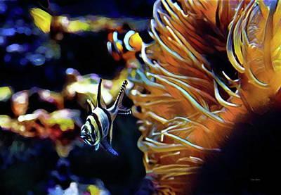 Photograph - The Banggai Cardinalfish by Russ Harris