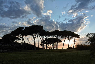 Tuscan Sunset Photograph - The Baratti Pine Trees by Joachim G Pinkawa