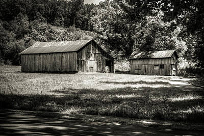 Photograph - The Barn And The Shed by Douglas Barnett
