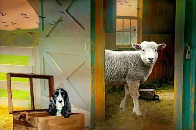 Photograph - Barn Fellows by Diana Angstadt