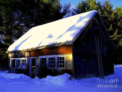 Photograph - The Barn by Elfriede Fulda