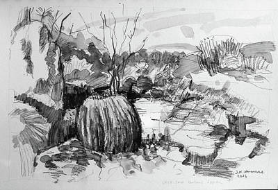 Miguel Drawing Drawing - The Barrel Cactus, Botanic Garden, Sma by Jack Hannula