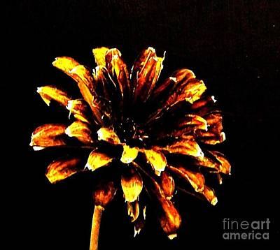 The Basant Flower Art Print