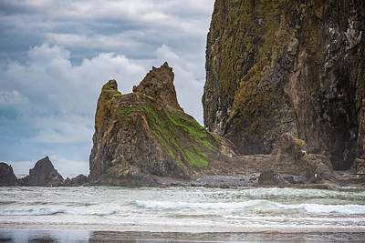 Photograph - The Base Of Haystack Rock by Anthony Doudt