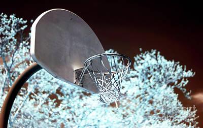 Photograph - The Basket by John Rizzuto