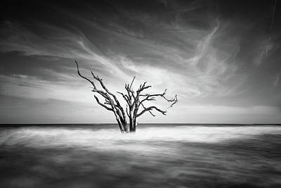 Botany Photograph - The Bay by Ivo Kerssemakers