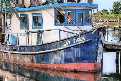 Photograph - The Bay Tiger by JC Findley