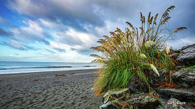 Photograph - The Beach At Brookings by Walt Baker