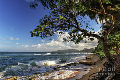 Photograph - The Beach At Kapaa by James Eddy