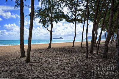 Photograph - The Beach At Waimanalo by Mitch Shindelbower