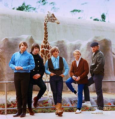 Jardine Photograph - The Beach Boys At The San Diego Zoo. by The Titanic Project