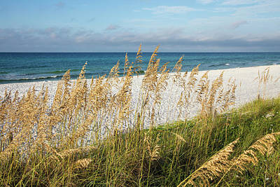 Wall Art - Photograph - The Beach by Cliff Middlebrook
