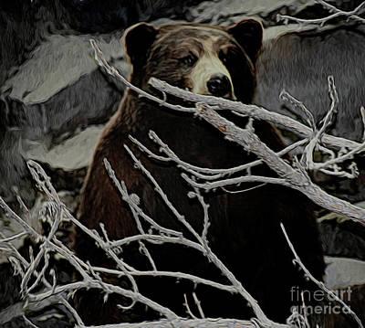 Photograph - The Bear by Ray Shrewsberry