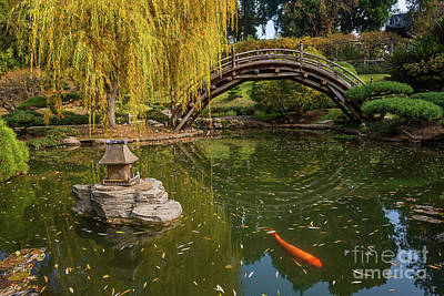 Willow Lake Photograph - The Beautiful Fall Colors Of The Japanese Gardens by Jamie Pham