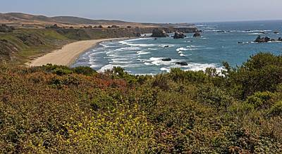 Photograph - The Beautiful Pacific Coast Highway by Willie Harper