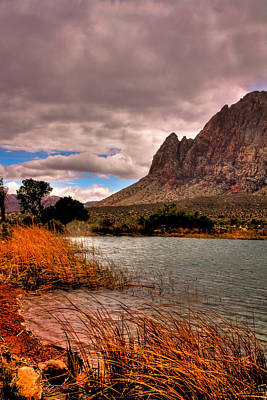 Photograph - The Beautiful Red Rock Canyon In Nevada by David Patterson